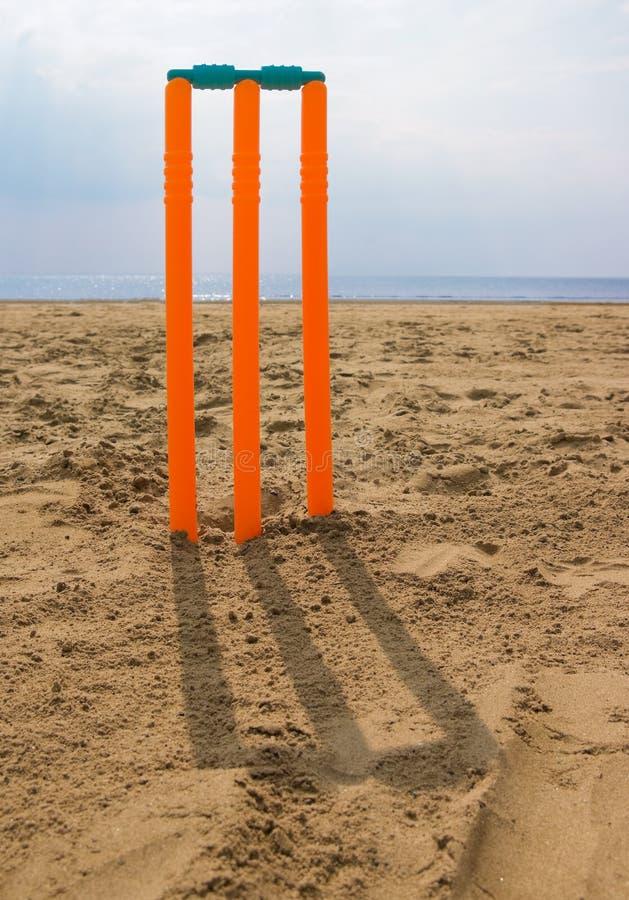 tronçons de cricket de plage images libres de droits