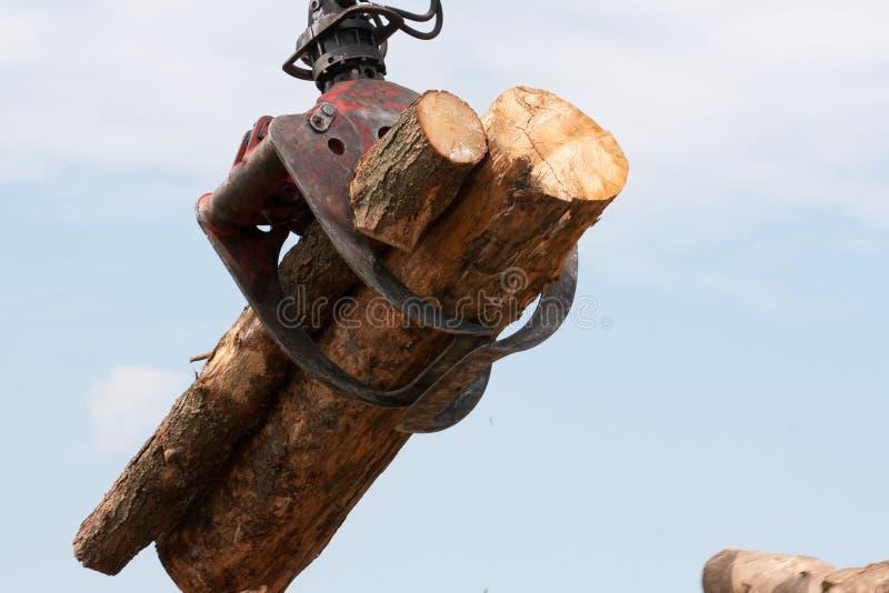Tronçons en bois sur une grue photos libres de droits