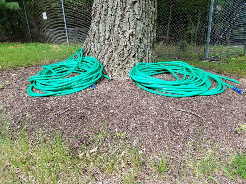 Tronc d'arbre avec les tuyaux et la barrière verts en métal photo libre de droits