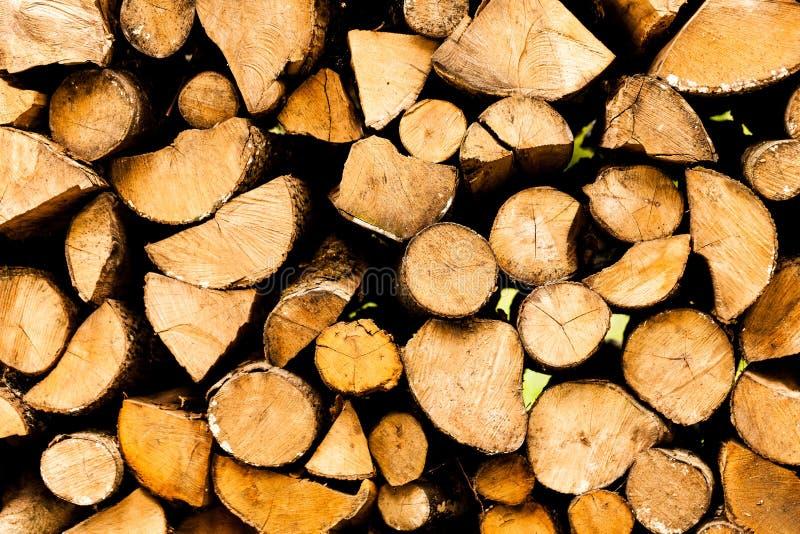 Tronchi e rami di albero segati nelle dimensioni differenti, accatastate su nell'industria blu di deposito di legname del conteni immagine stock