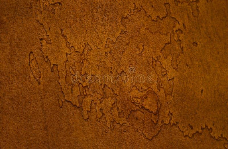 Tronco da árvore de Platan no filtro fotografia de stock