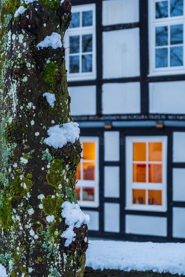 Tronco de árbol demasiado grande para su edad con el musgo a la izquierda y una fachada borrosa de la casa de una casa de entrama fotos de archivo