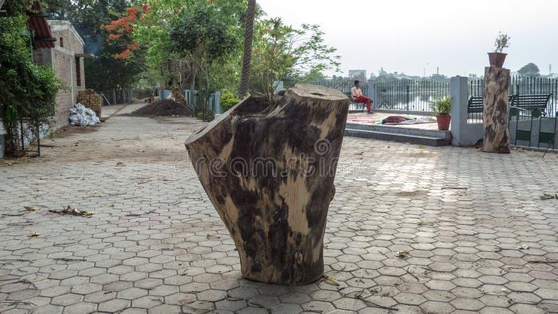 Tronco de árvore desbastado no lago Sirpur, Indore-Índia imagens de stock royalty free