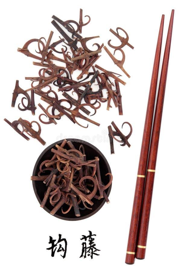 Tronco de Uncaria con los ganchos fotografía de archivo
