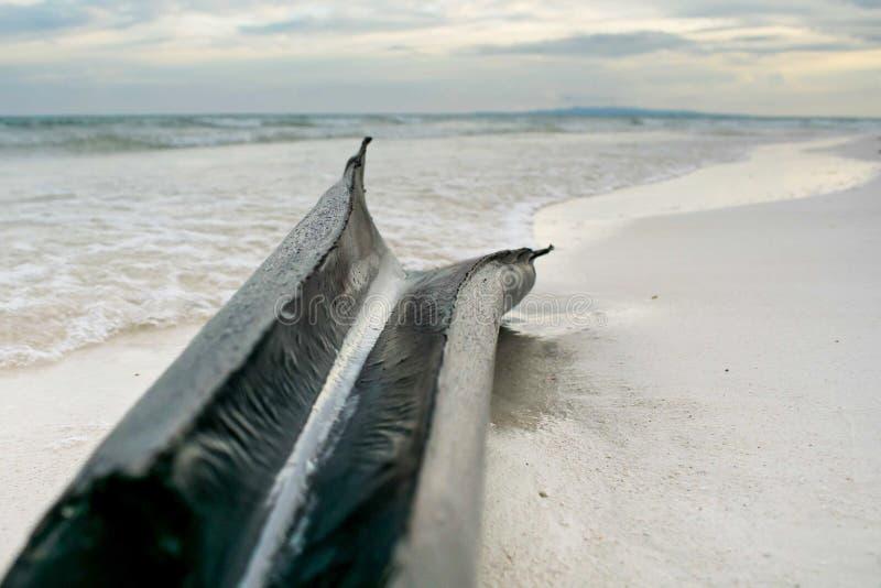 Tronco del plátano en la arena de la playa fotografía de archivo