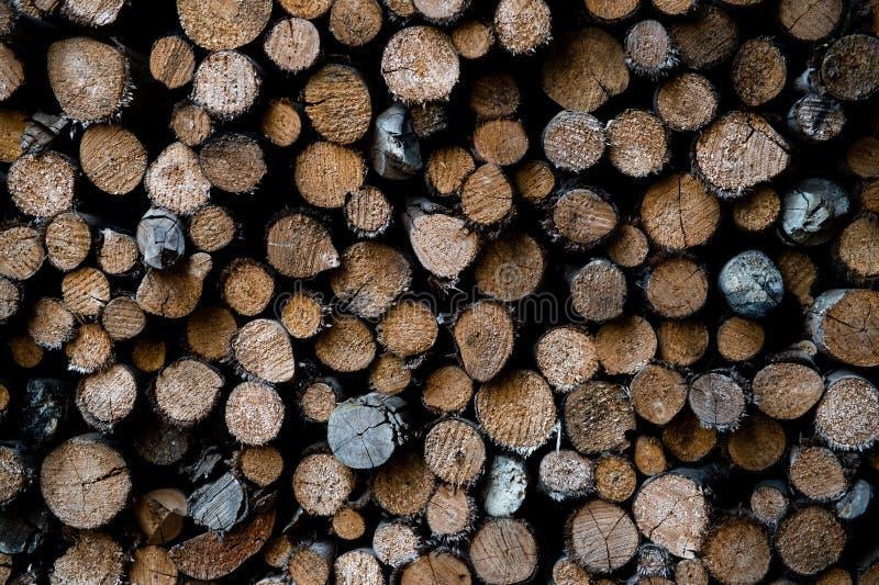 Troncos de árvore empilhados fotografia de stock royalty free