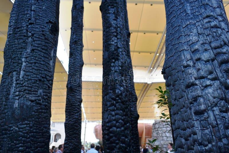 Troncos de árvore queimados do carvão vegetal expostos na entrada do pavilhão de Mônaco na EXPO Milão 2015 imagem de stock