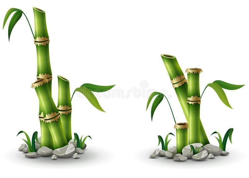 Troncos de bambú verdes con las hojas en el fondo blanco ilustración del vector
