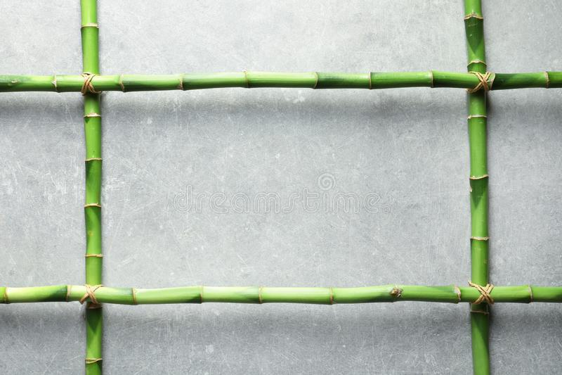 Troncos y espacio de bambú verdes para el texto en fondo gris fotos de archivo