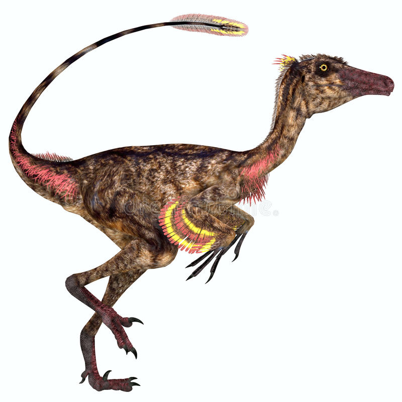Troodon Dinosaur Profile. Troodon was a carnivorous small dinosaur that lived in North America during the Cretaceous Period stock illustration
