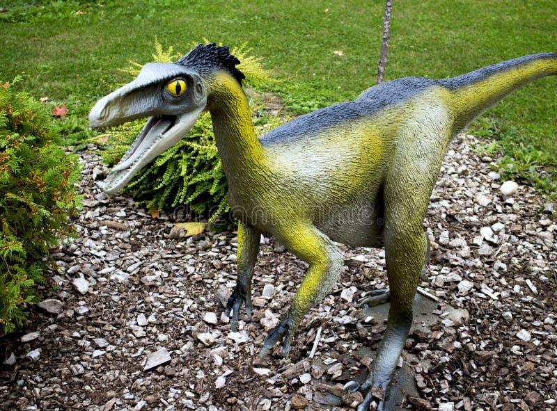 Troodon-Dinosaurier lizenzfreie stockbilder
