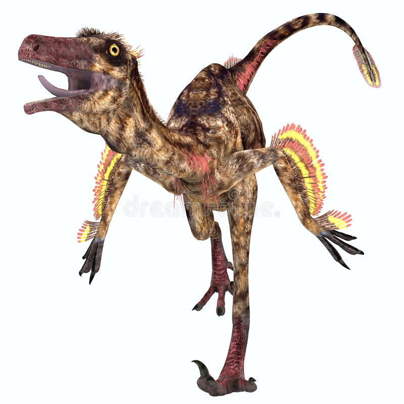 Troodon Reptile. Troodon was a carnivorous small dinosaur that lived in North America during the Cretaceous Period stock illustration