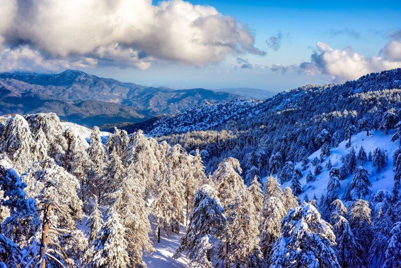 Troodos pasmo górskie w zimie Cypr obrazy royalty free