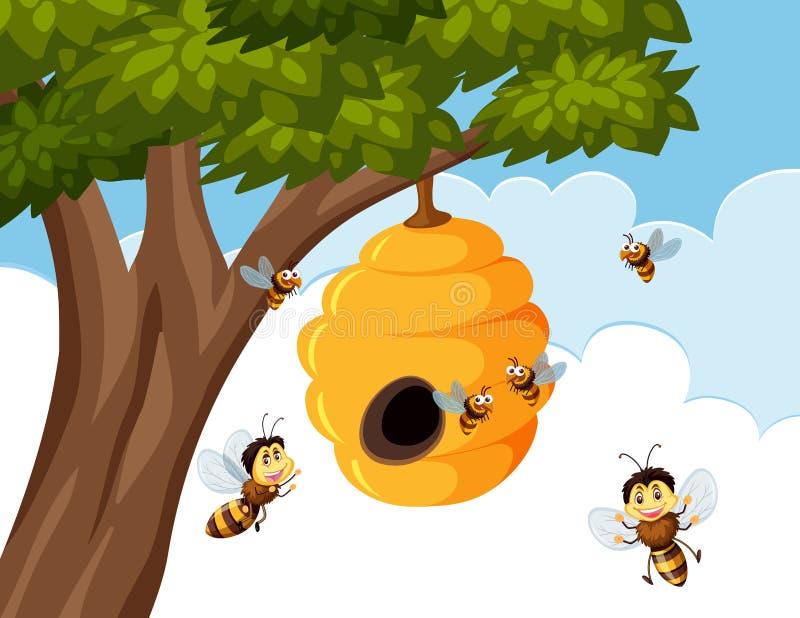 Tropeçar abelhas em torno da colmeia ilustração do vetor
