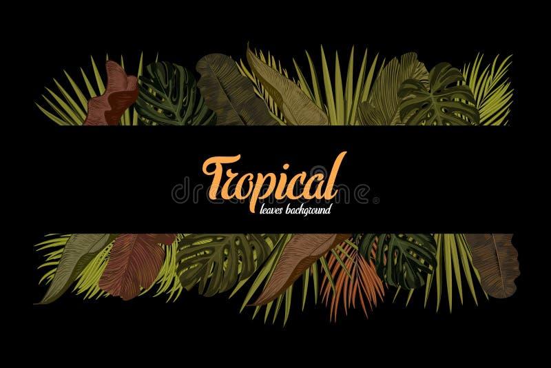 Tropen lassen Hintergrund mit Rahmen für Ihren Text Schablone des Vektor-EPS10 lizenzfreie abbildung