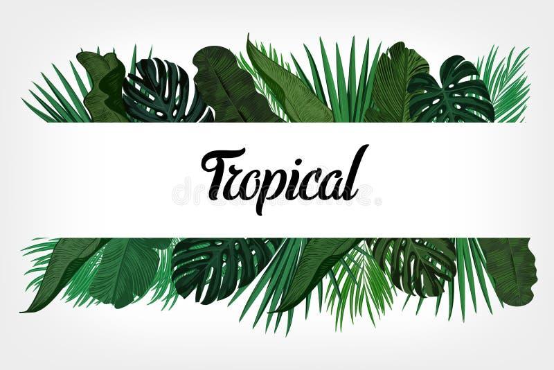 Tropen lassen Hintergrund mit Rahmen für Ihren Text Schablone des Vektor-EPS10 vektor abbildung