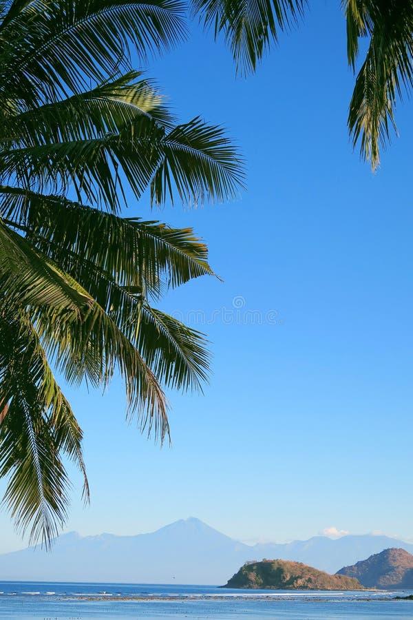 Tropeninselansicht: Ozean, Berge und blauer Himmel im Palmblattrahmen Sumbawa-Insel, Indonesien lizenzfreies stockbild