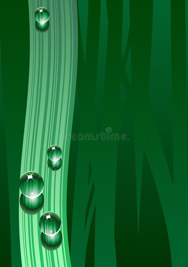 Tropfen auf grünem Hintergrund lizenzfreie abbildung