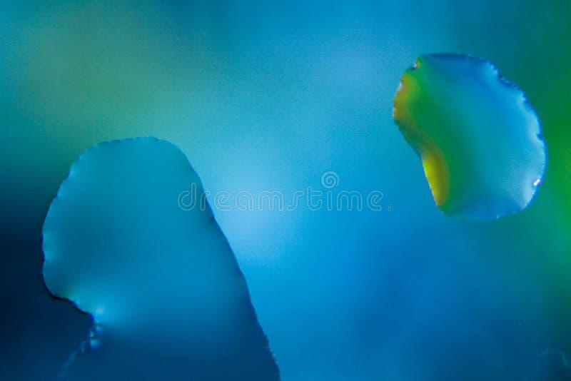 Tropfen des blauen Wassers - Makro stockfoto