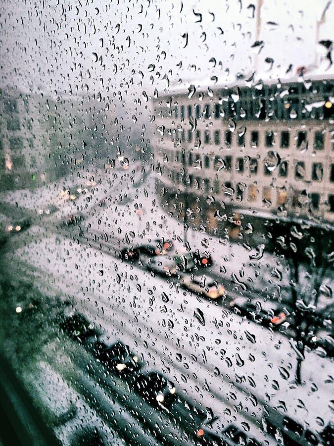 Tropfen des Regens stockbilder