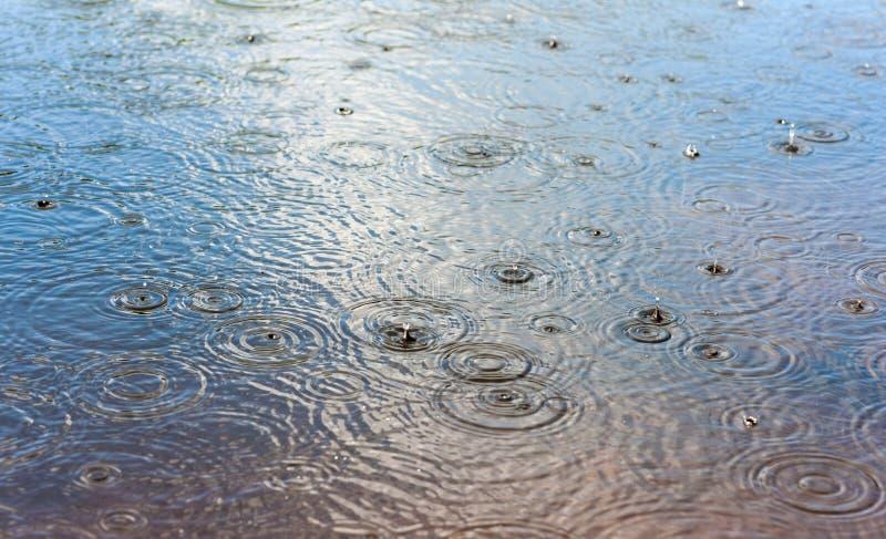 Tropfen des Regens lizenzfreie stockbilder