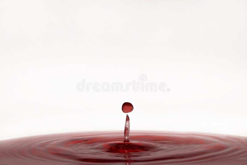 Tropfen des Weins lizenzfreie stockfotos