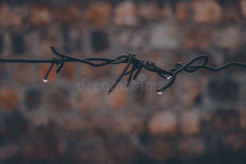 Tropfen-Regen traurig lizenzfreie stockfotos