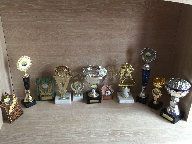 trophies stock foto's