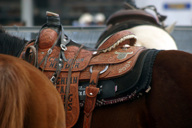 Trophy Saddle stock images