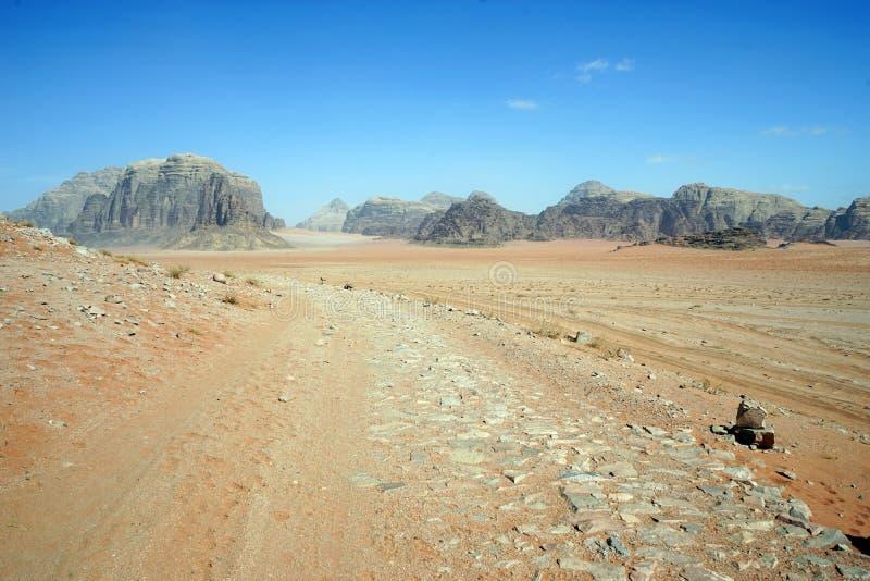 Tropi na czerwonym piasku w wadiego rumu obrazy royalty free