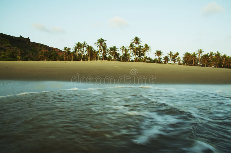 Tropic stock photography