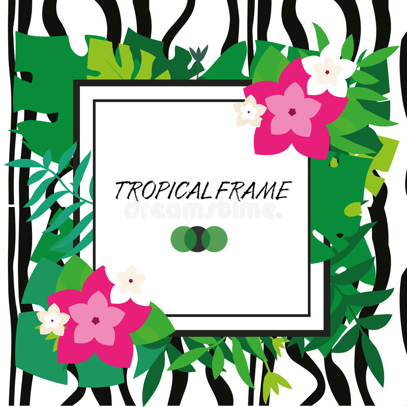 Tropic banner. Design template. Tropical frame. Exotic leaves and flowers frame with blank space paper and zebra stripes stock illustration