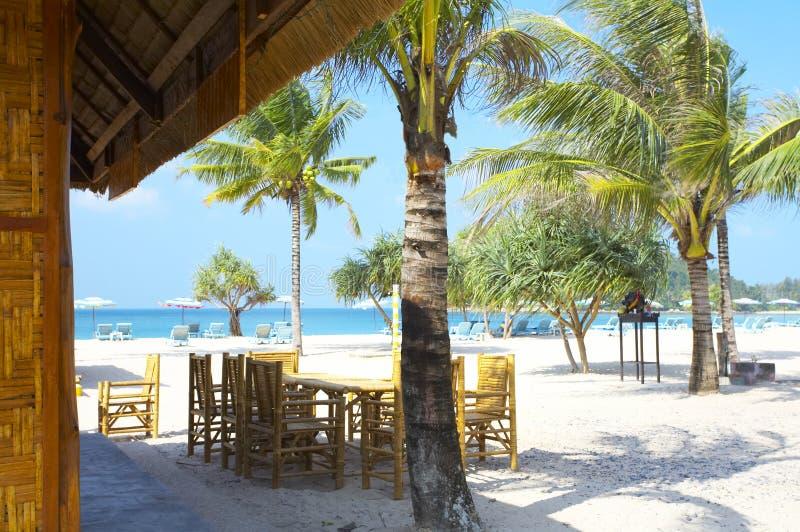 Tropic café royalty free stock photo