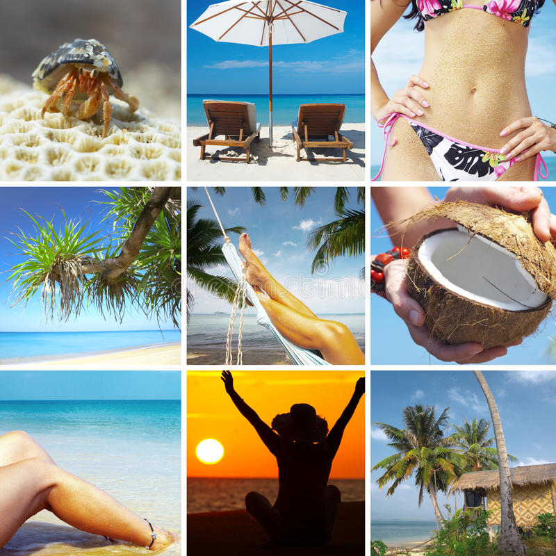 Tropic collage royalty free stock photos