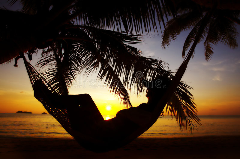 Download Tropic outline stock image. Image of lounge, shore, afterglow - 3255779