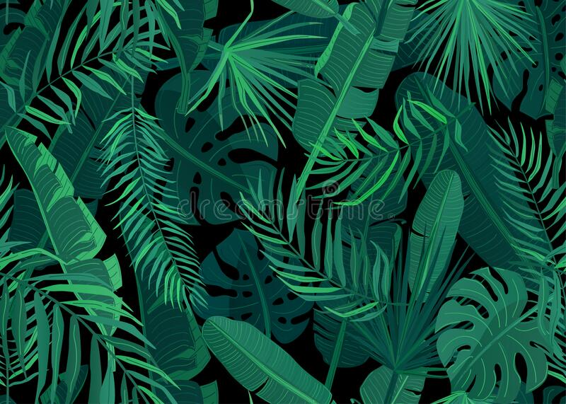 Tropic seamless pattern vector illustration. Tropical floral endless background with exotic palm, banana, monstera royalty free stock images