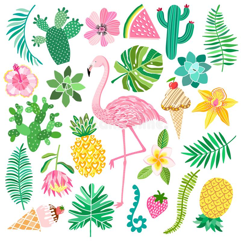 Tropic summer vector set vector illustration