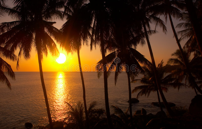 Tropic sunset stock images