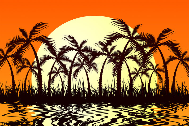 Download Tropic Sunset stock vector. Image of grass, tropic, beach - 4166429