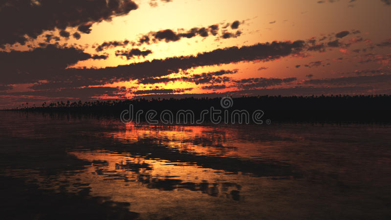 Tropic Sunset royalty free stock photo