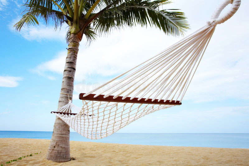 Tropic swing. View of nice white hammock hanging between two palms stock image