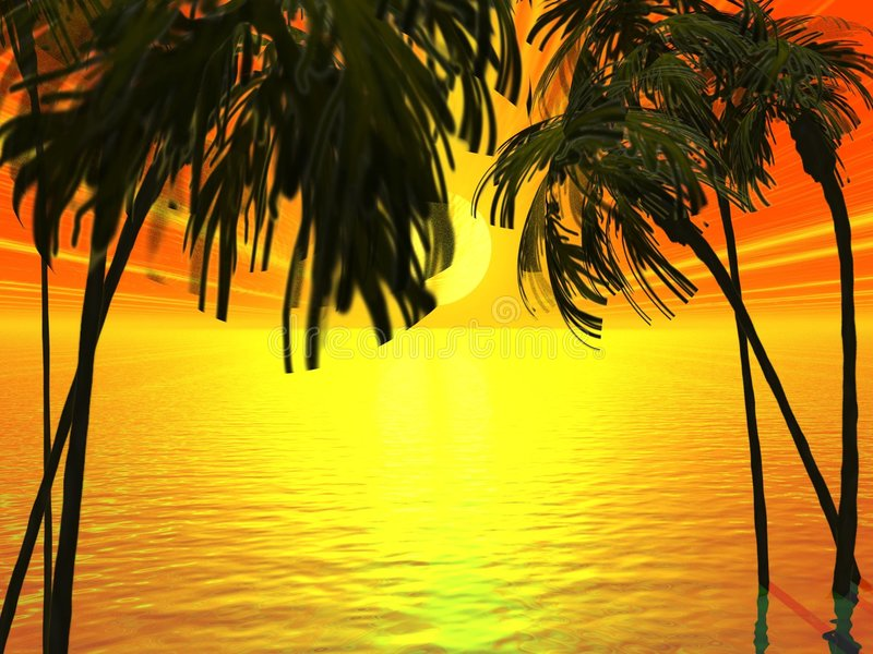 Tropical images stock