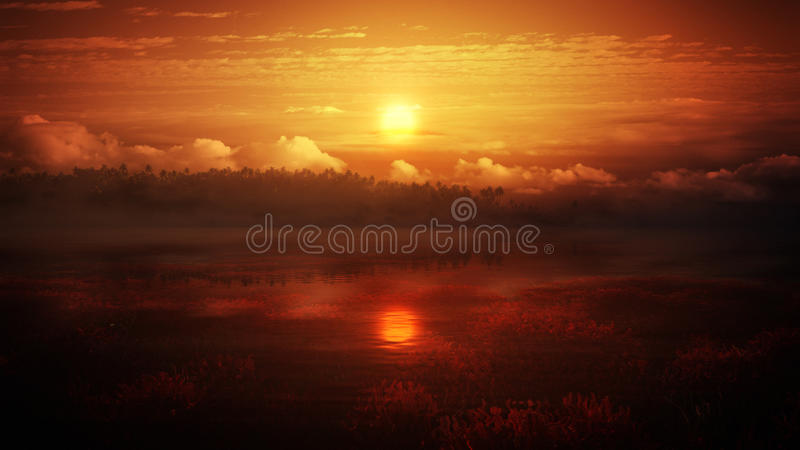 Tropical Amber Sky royalty free stock image