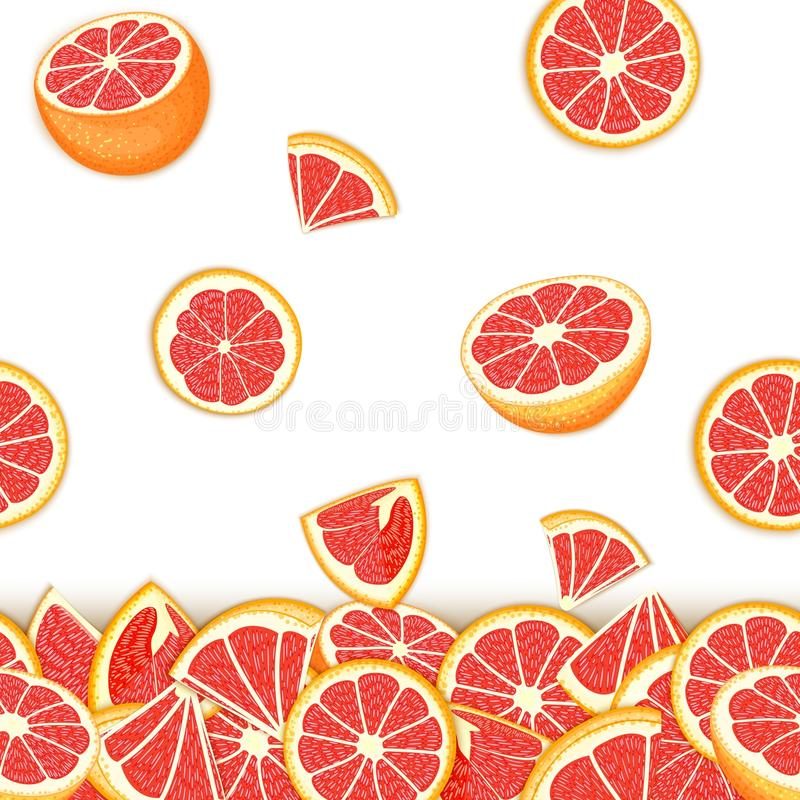 Tropical background of falling red pomelo fruit. Vector card illustration . Grapefruit vector seamless pattern citrus royalty free illustration
