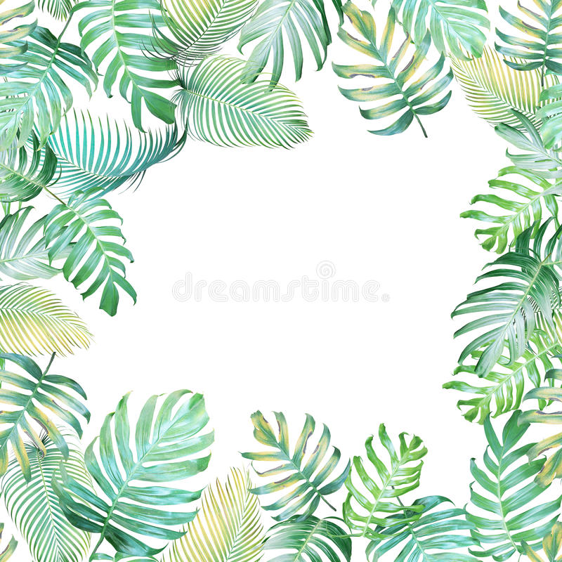 Tropical background with Monstera philodendron and palm leaves i stock illustration