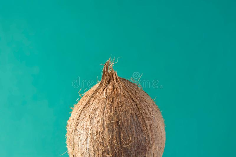 Tropical Background Ripe Coconut on Green Backdrop. Healthy Food Lifestyle Vitamins Summer Travel Vacation Concept stock photography