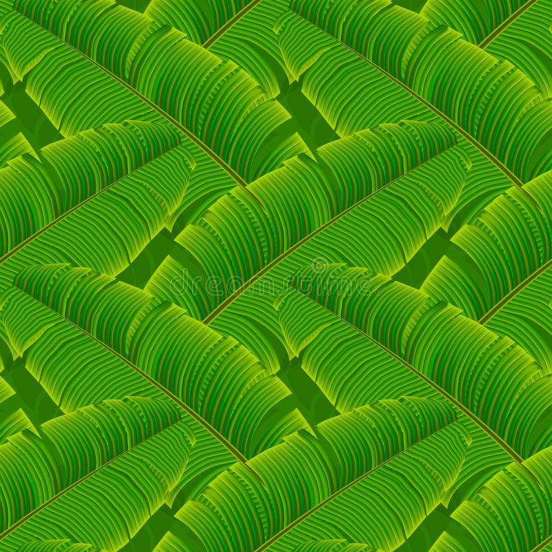 Tropical banana leaves seamless pattern stock illustration