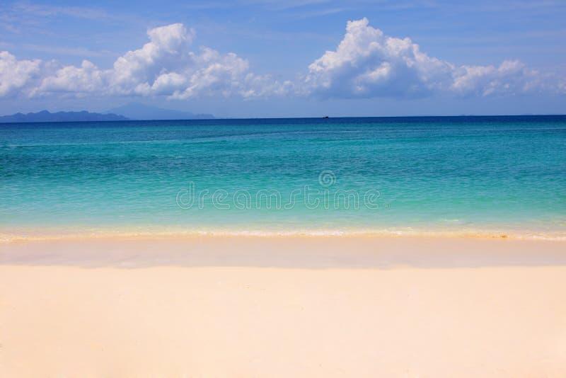 Download Tropical beach stock photo. Image of coastline, sand - 11033476