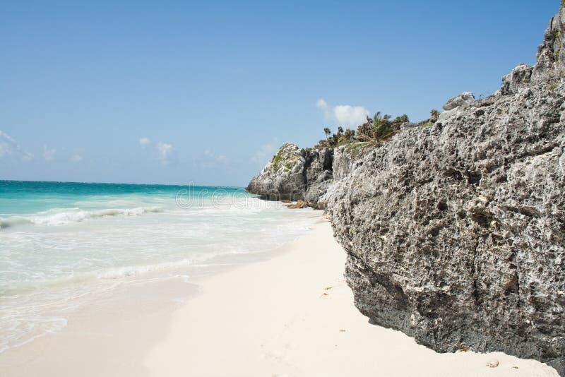 Download Tropical beach stock photo. Image of paradise, horizon - 11274288