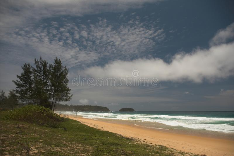Download Tropical beach stock photo. Image of tree, clouds, ocean - 12484540